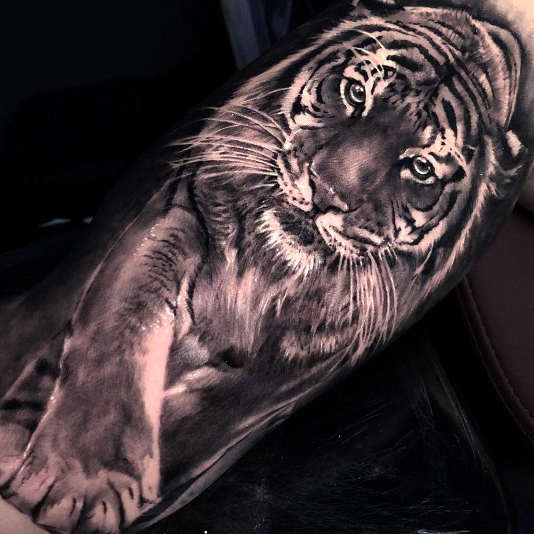 татуировка тигра на руке