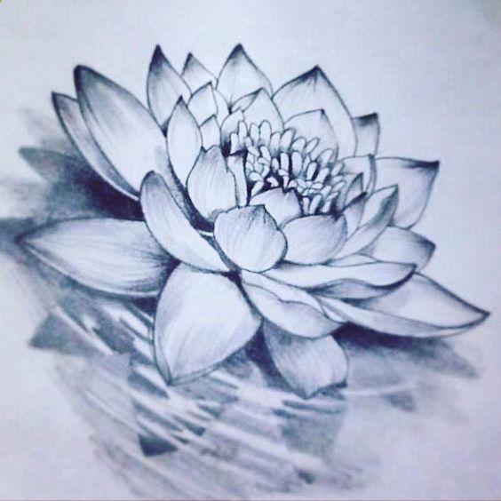 ескіз татуювання лотоса в воді