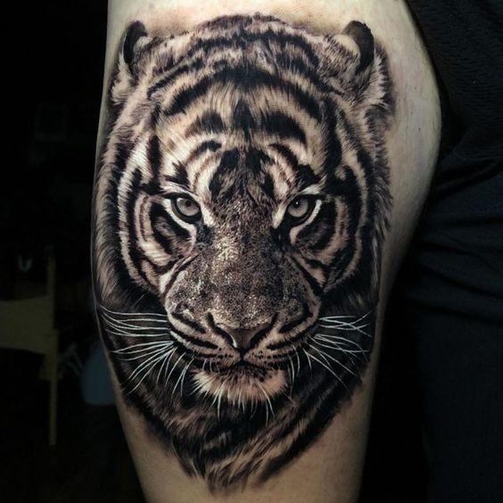 мужское тату тигра на плече