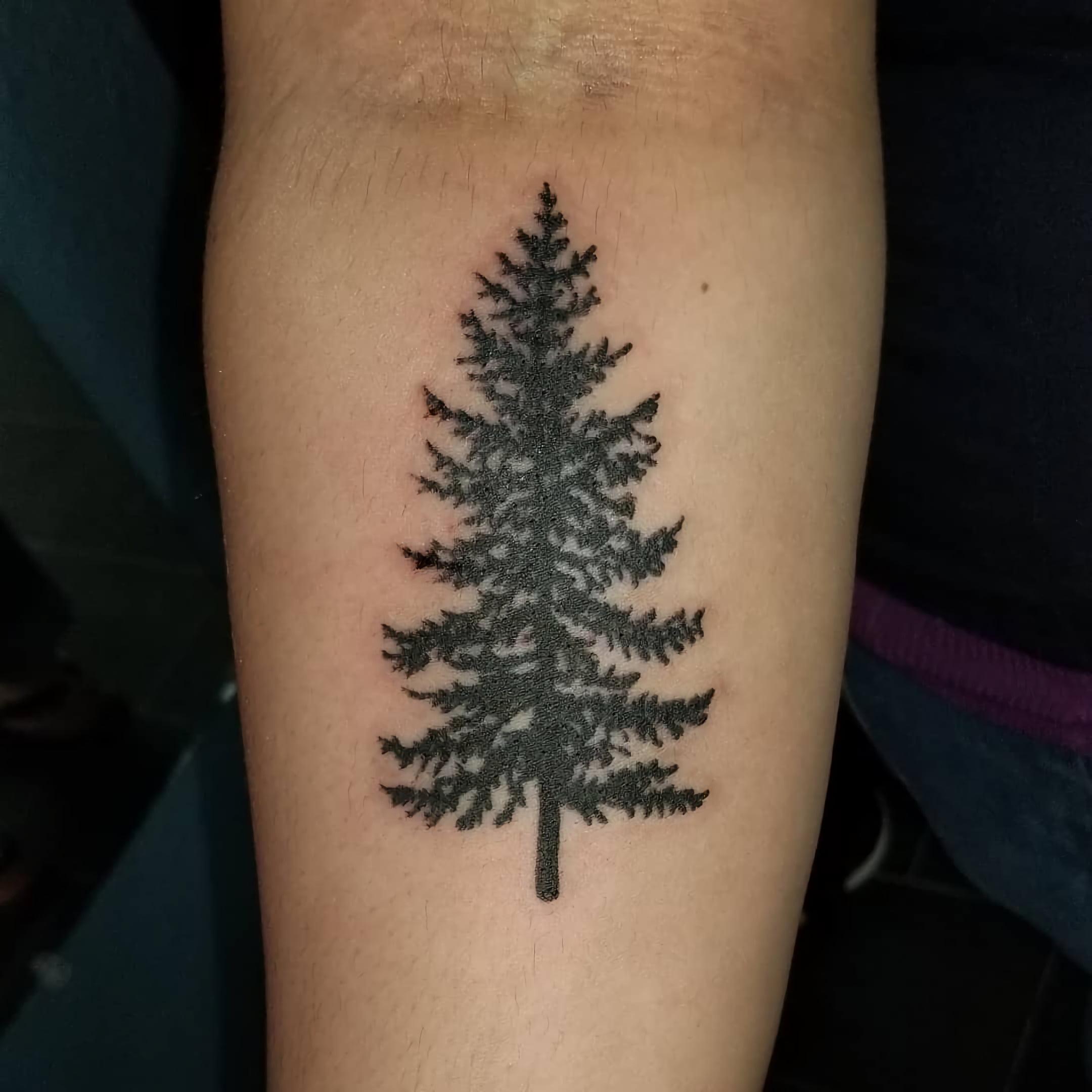 Татуировка с вечнозеленым деревом